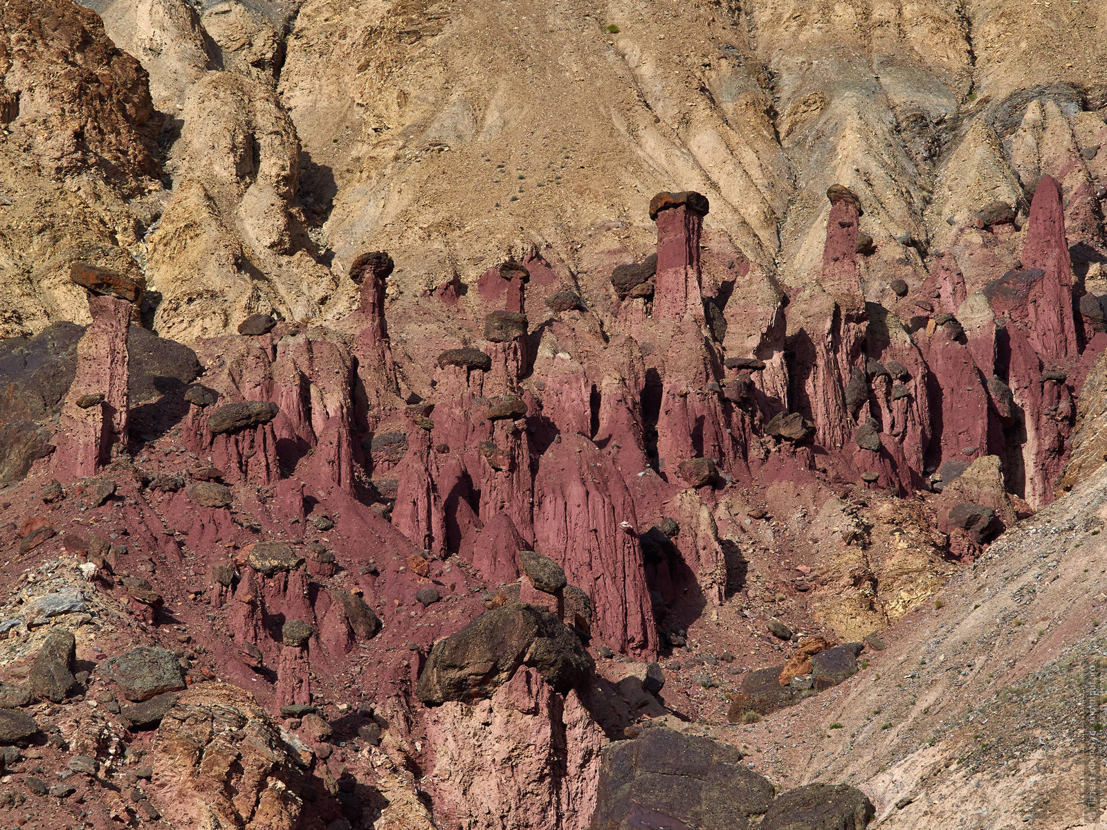 Stone mushrooms of Burgundy Gorge. Tour Legends of Tibet: Ladakh, Lamayuru, Da Khan and Nubra, 19.09. - 28.09.2019.