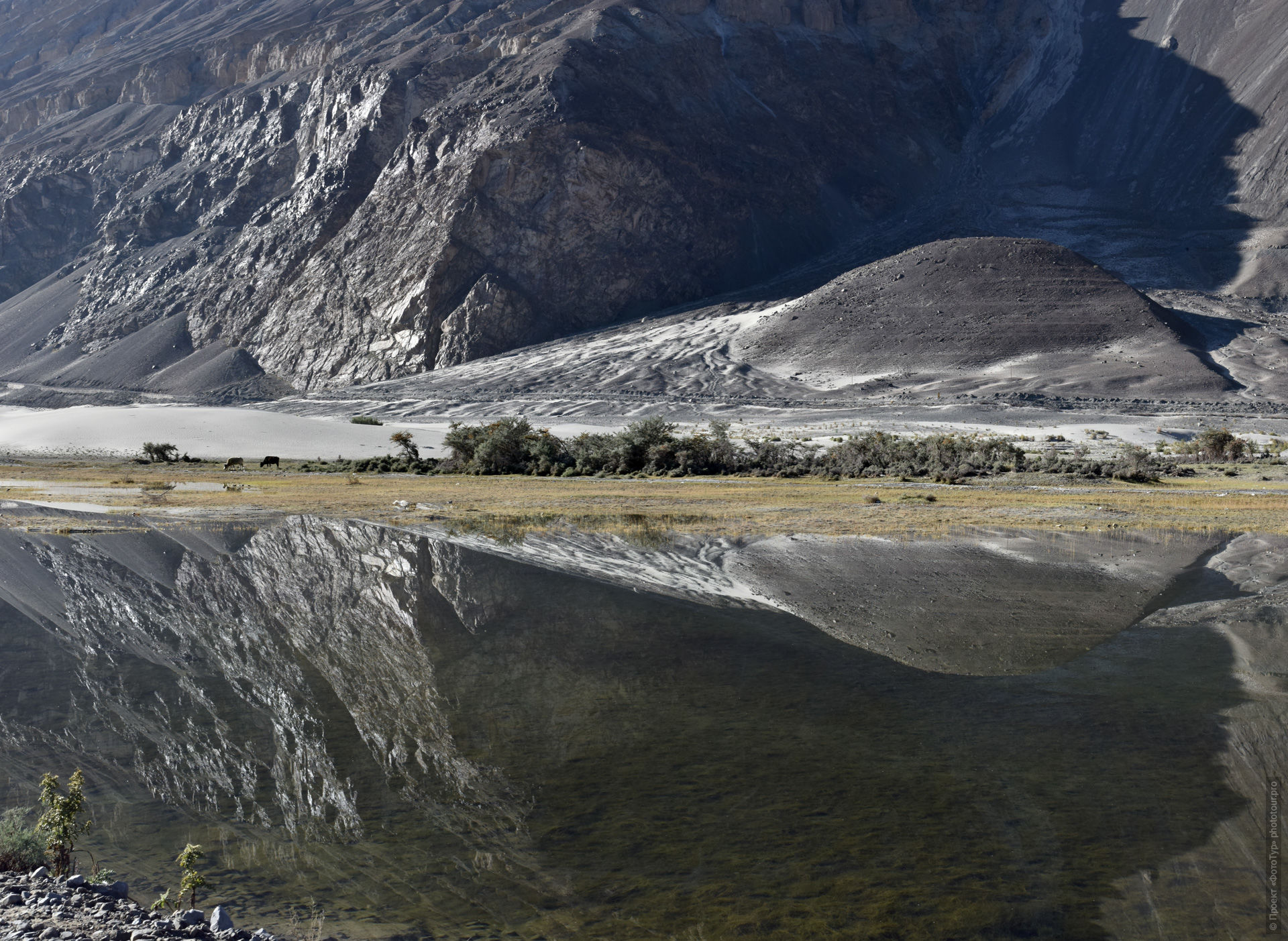 Lake in the Nubra Valley. Expedition Tibet Lake-2: Pangong, Tso Moriri, Tso Kar, Tso Startsapak, Leh-Manali highway.