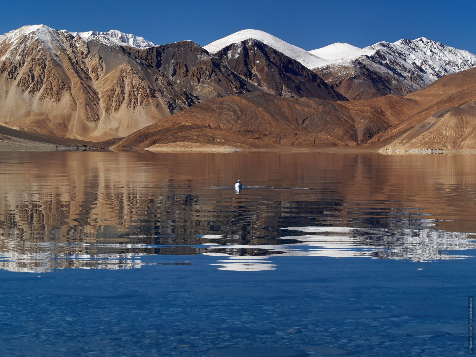 Alpine lake Pangong. Photo tour / tour Tibet of Lake-1: Pangong, Tso Moriri, Tso Kar, Tso Chiagar, Dance of Tsam on Lake Pangong, 19.06. - 28.06.2021.