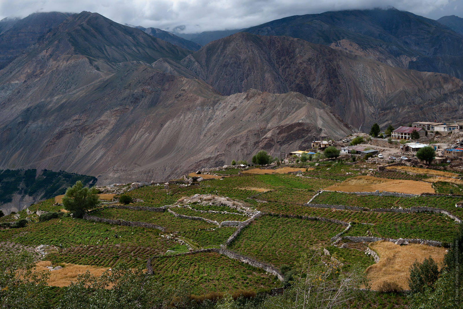 The alpine village of Spiti Valley. Tour of the Spiti Valley, Little Tibet, India, in August 2017.