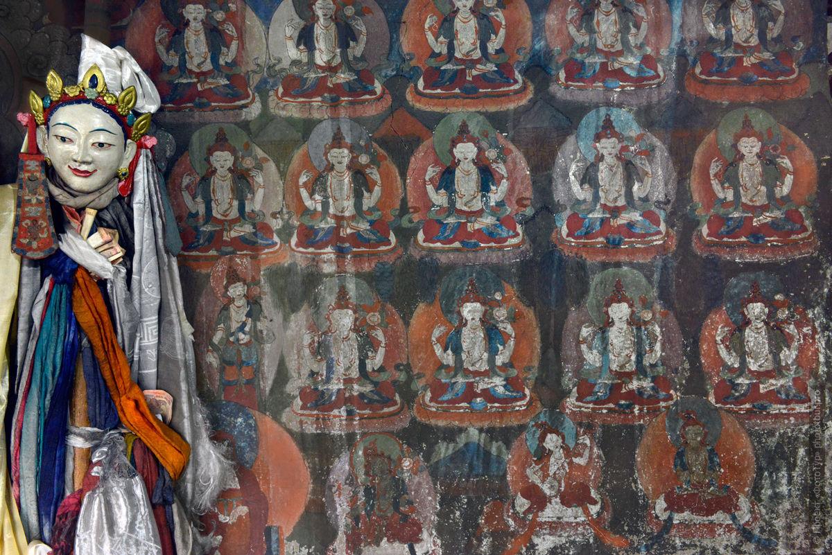 Буддийский монастырь Стагна Гонпа, Ладакх. Туры в Ладакх.