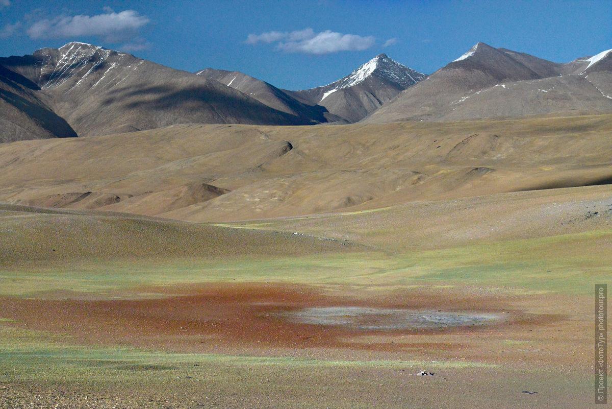 Окрестности высокогорного озера Тсо Морири, Ладакх, Тибет, Индия. Туры в ладакх.