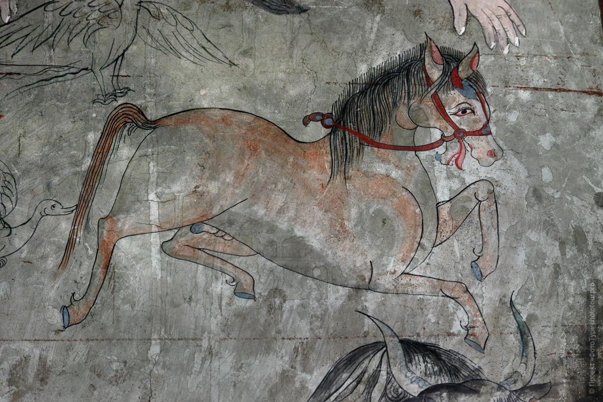 Буддийский монастырь Тиксей Гонпа. Туры в Ладакх, Индия.